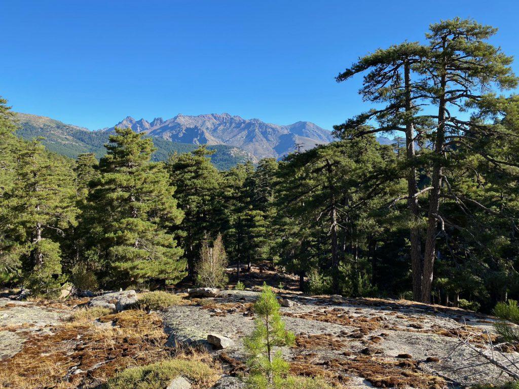 the beautiful part of the trek